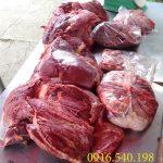 Thịt Đà Điểu
