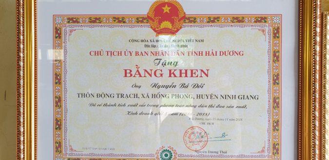 Bằng khen từ Chủ tịch UBNN tỉnh Hải Dương